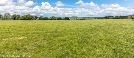 Looking across a field of lush grass in Pembrokeshire, Wales, towards the Preseli Hills in the distance