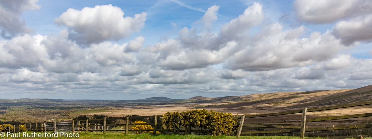 Looking east along the Preseli Hills